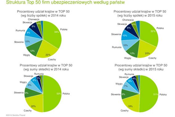 4.raport Deloitte2